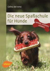 die-neue-spassschule-fuer-hunde