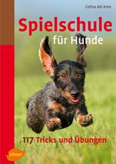 Spielschule-fuer-Hunde-del-amo
