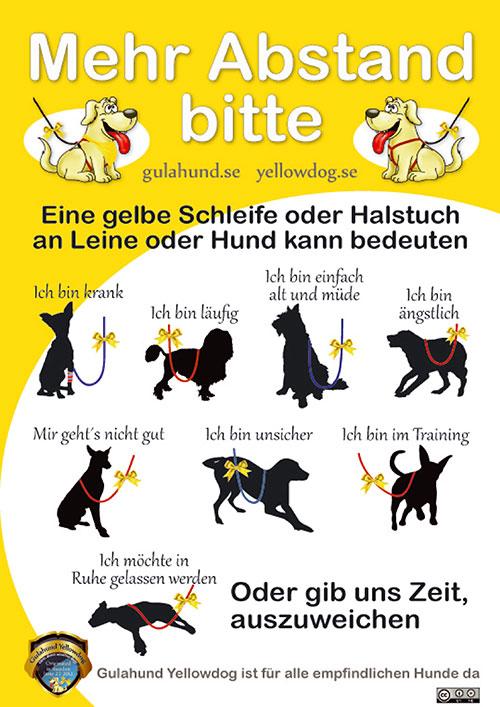 Gelbe-Schleife-Gelber-Hund