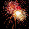 Ein lautes Feuerwerk kann so manchen Hund oder so manche Katze in Panik versetzen!